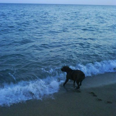 Ains.. el agua estará muy fría.. dirección Barcelona