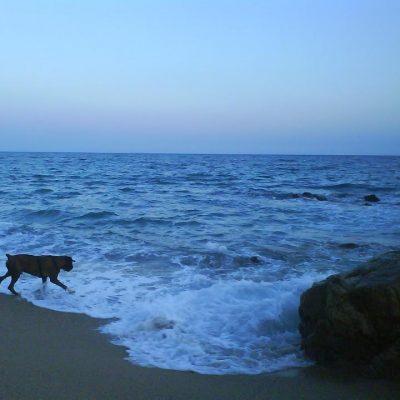 Mañana tocaremos el mar.. dirección Barcelona